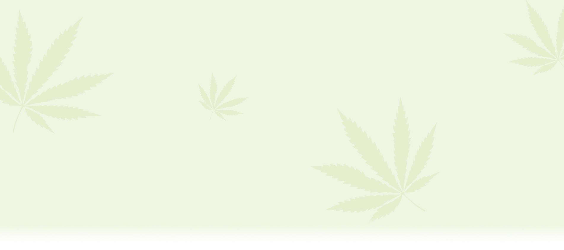 Конопени продукти от Медихемп