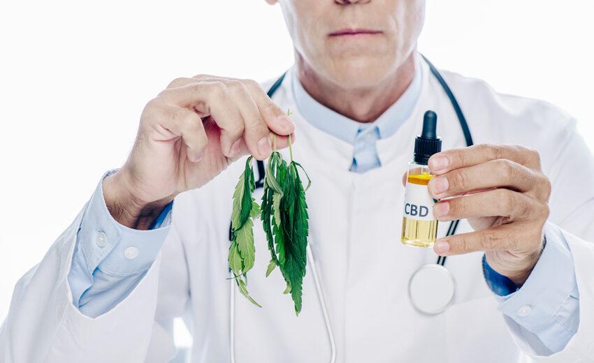 Канабидиол (CBD) – ползи за човешкото здраве