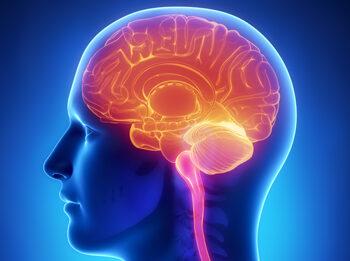 CBD се препоръчва при неврологични заболявания