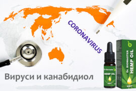 CBD (канабидиол) срещу Коронавирус?