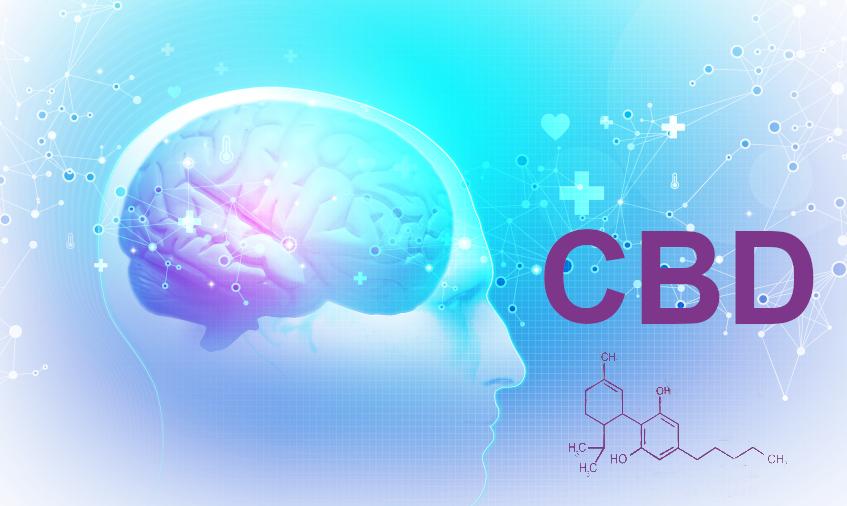 Канабидиол и невроразвитие