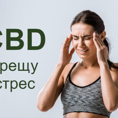 CBD при стрес и мигрена