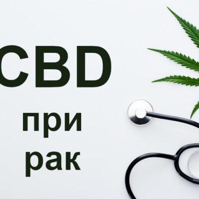 CBD при рак